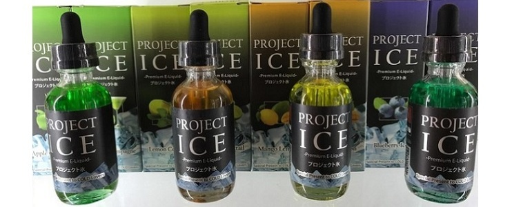 Project ICE